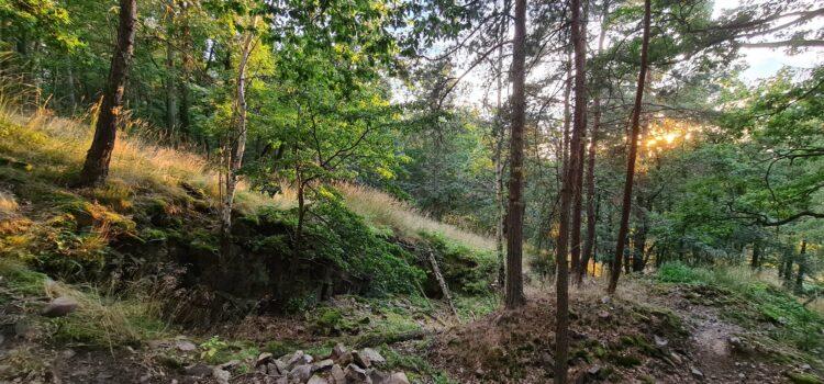 Zapomenuté lomy na Chlumu nad Dobřichovicemi
