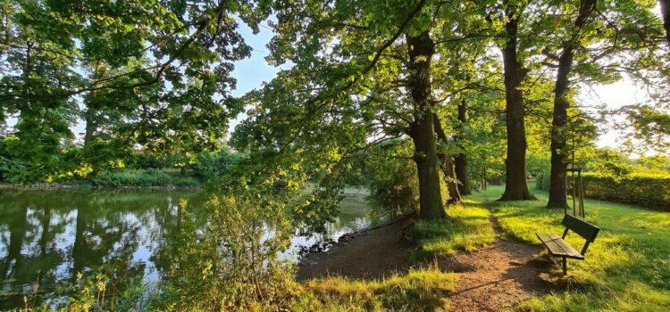 Skrytý starodávný kout Bzdinka, rybník a památné duby